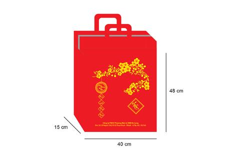 in túi giấy đựng quà tết giá cực rẻ
